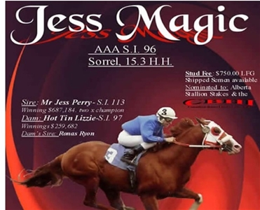 Jess Magic